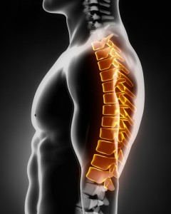 thoracic spine, spine,  Houston, Sugarland, Woodlands, Katy, Spring, Sealy, Baytown, Pearland, Beaumont, Galleria, Conroe, Humble, Kingwood, Port Arthur, Galveston, Memorial City, Texas Medical Center, TMC, Texas, TX, Dallas, Fort Worth, San Antonio, Austin